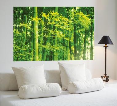 fototapete riesenposter bambus im fr hling bamboo in spring tapete fototapete natur. Black Bedroom Furniture Sets. Home Design Ideas